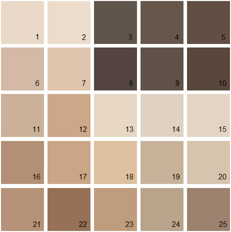 Benjamin Moore Brown House Paint Colors - Palette 04