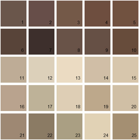 Benjamin Moore Brown House Paint Colors Palette 05