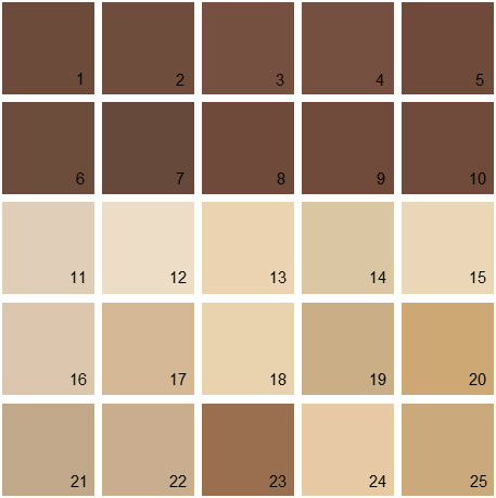 Benjamin Moore Brown House Paint Colors - Palette 06