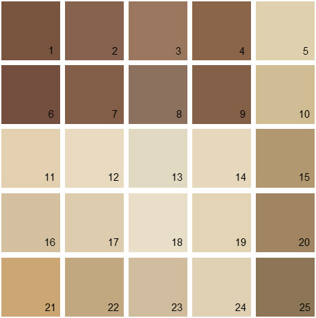 Clay Brown Paint Colors