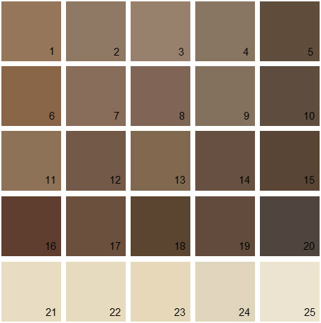 Benjamin Moore Brown House Paint Colors Palette 08