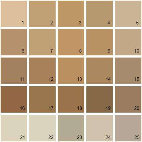 Benjamin Moore Brown House Paint Colors - Palette 10