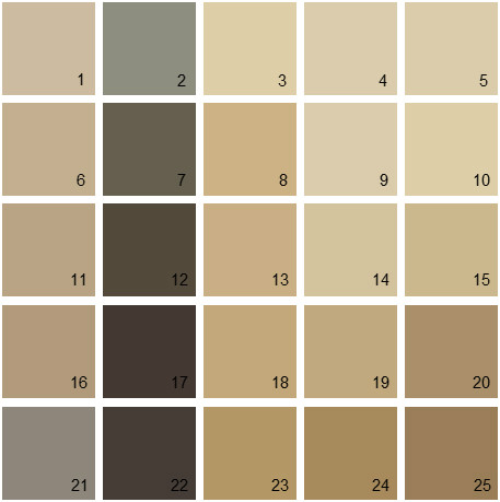 Benjamin Moore Brown House Paint Colors - Palette 11