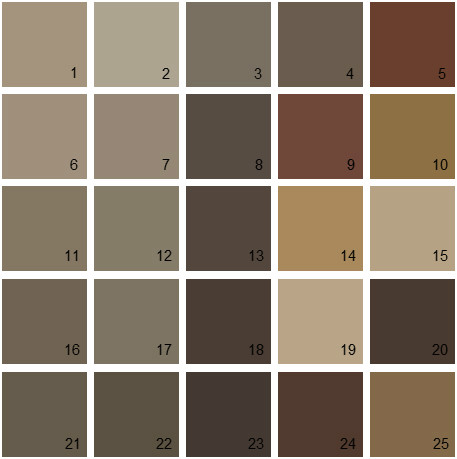 Benjamin Moore Brown House Paint Colors - Palette 14