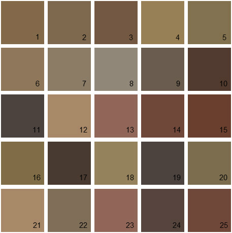 Benjamin Moore Brown House Paint Colors - Palette 15