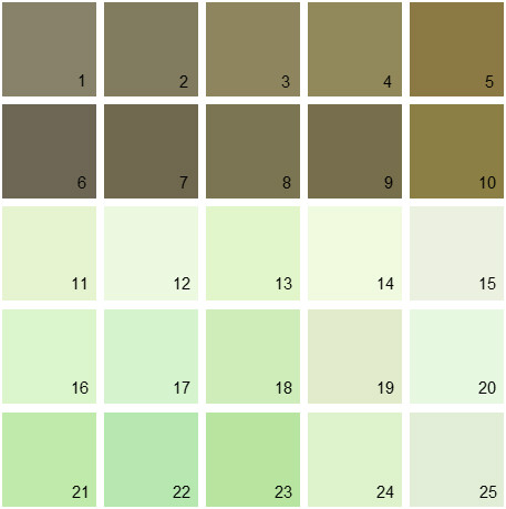 Benjamin Moore Green House Paint Colors - Palette 07