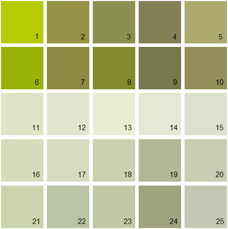 Benjamin Moore Green House Paint Colors - Palette 09