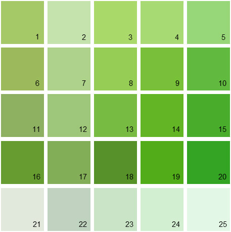 Benjamin Moore Green House Paint Colors - Palette 11