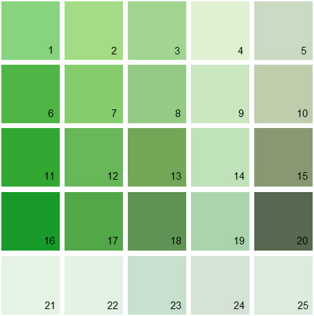 Benjamin Moore Green House Paint Colors Palette 12