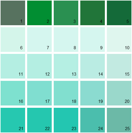 Benjamin Moore Green House Paint Colors - Palette 21
