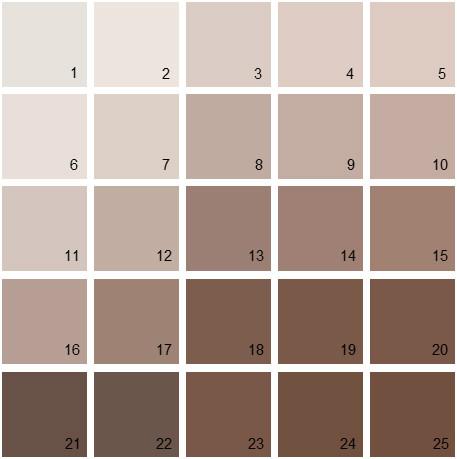 Benjamin Moore Neutral House Paint Colors - Palette 01