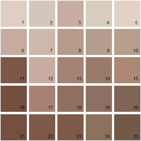Benjamin Moore Neutral House Paint Colors - Palette 02