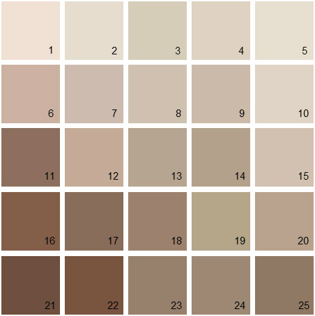 Benjamin Moore Neutral House Paint Colors - Palette 03