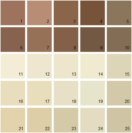 Benjamin Moore Neutral House Paint Colors - Palette 09