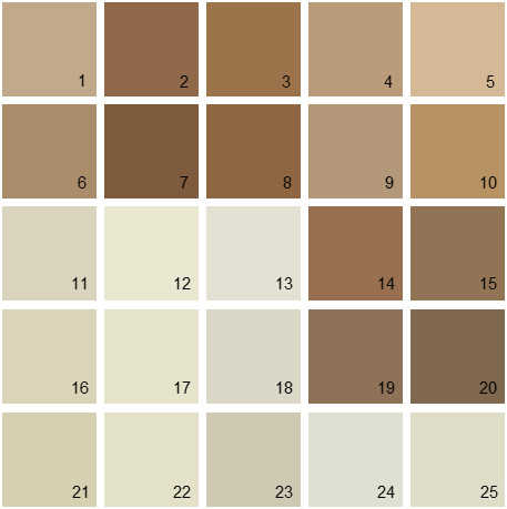 Brown paint color palette images for Neutral color paint schemes