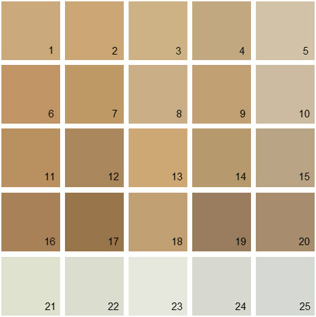 Tan paint colors interiors design for Rich neutral paint colors