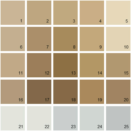 Shades Of Neutral Colors Of Benjamin Moore Capilano Bridge 1076 Nikeweekend