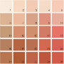 Benjamin Moore Orange House Paint Colors - Palette 02