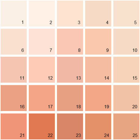 Benjamin Moore Orange House Paint Colors - Palette 04