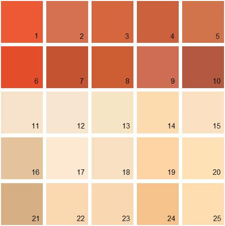 Benjamin Moore Orange House Paint Colors - Palette 08