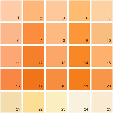 Benjamin Moore Orange House Paint Colors Palette 11