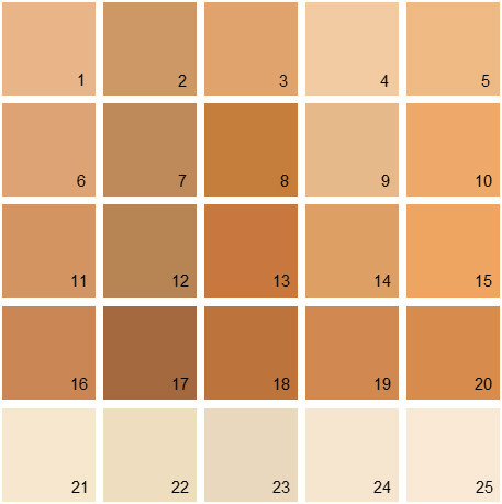 benjamin moore paint colors orange palette 12 house paint colors