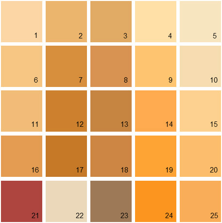 Benjamin Moore Orange House Paint Colors - Palette 13