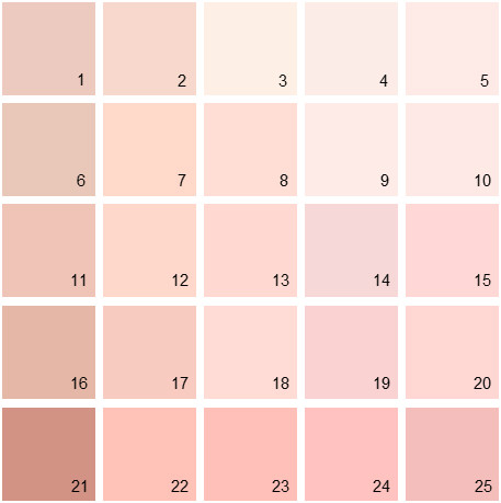 Benjamin Moore Pink House Paint Colors Palette 02