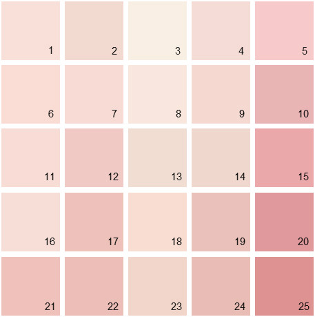 Benjamin Moore Pink House Paint Colors - Palette 03