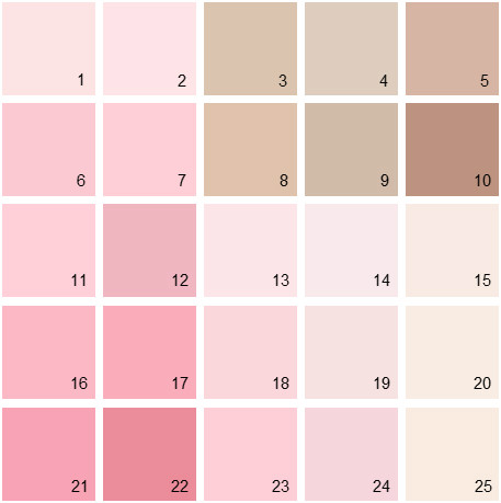 Benjamin Moore Pink House Paint Colors Palette 05