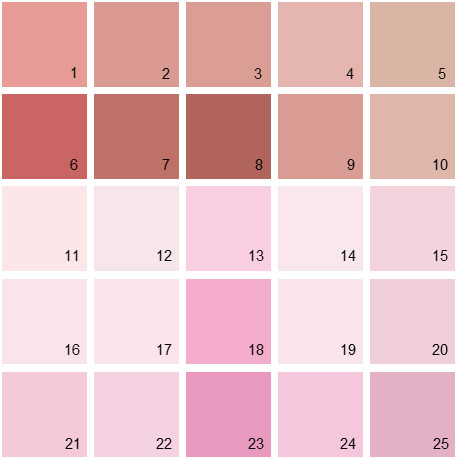Benjamin Moore Pink House Paint Colors - Palette 07