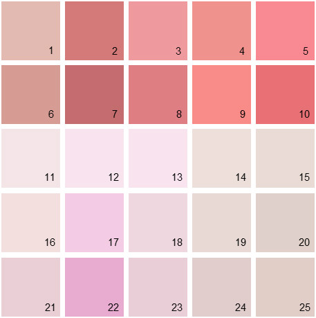 Benjamin Moore Pink House Paint Colors - Palette 08
