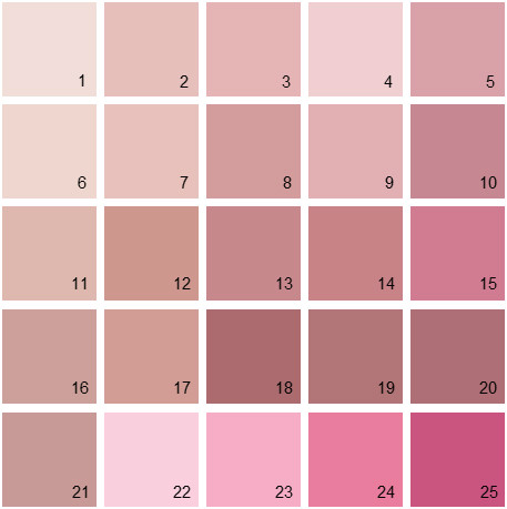 Benjamin Moore Pink House Paint Colors - Palette 10