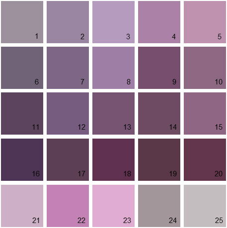 Benjamin Moore Purple House Paint Colors - Palette 07