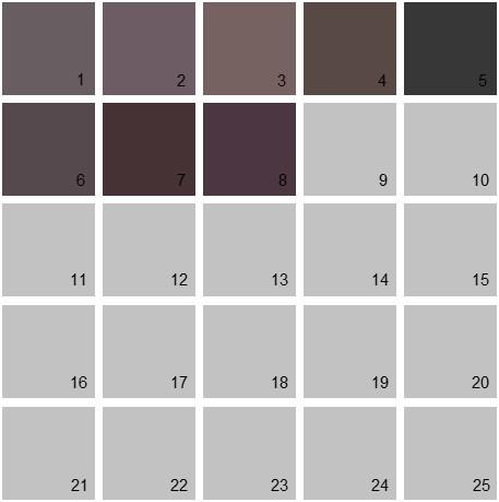 Benjamin Moore Purple House Paint Colors - Palette 09