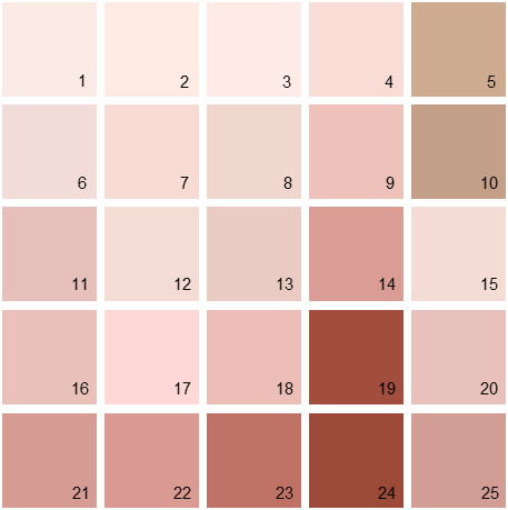 Benjamin Moore Red House Paint Colors - Palette 05