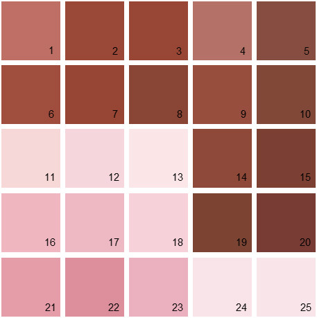 Benjamin Moore Red House Paint Colors - Palette 10