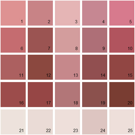 Benjamin Moore Red House Paint Colors - Palette 14