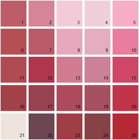 Paint Color Pink Swatches Name