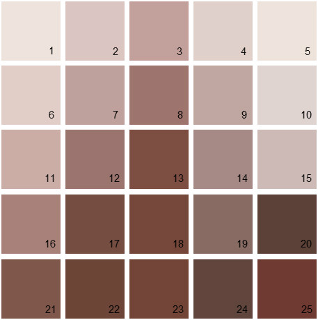Benjamin Moore Red House Paint Colors - Palette 19