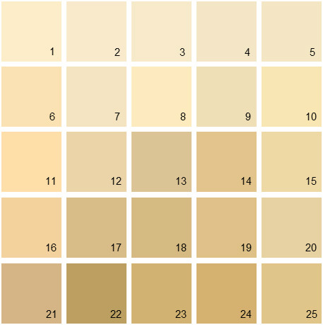 Benjamin Moore Yellow House Paint Colors - Palette 01