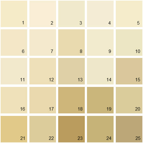 Benjamin Moore Yellow House Paint Colors - Palette 03