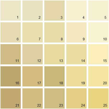 Benjamin Moore Yellow House Paint Colors - Palette 04