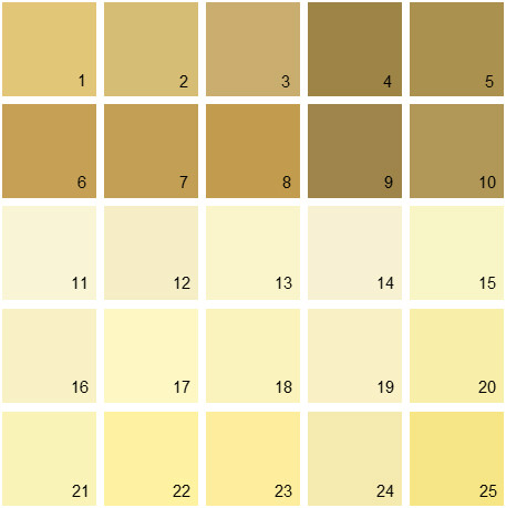 Benjamin Moore Yellow House Paint Colors - Palette 07