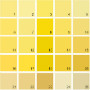 Benjamin Moore Yellow House Paint Colors - Palette 11