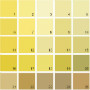 Benjamin Moore Yellow House Paint Colors - Palette 12