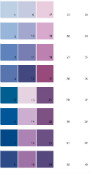 Sherwin Williams Energetic Brights House Paint Colors - Palette 04