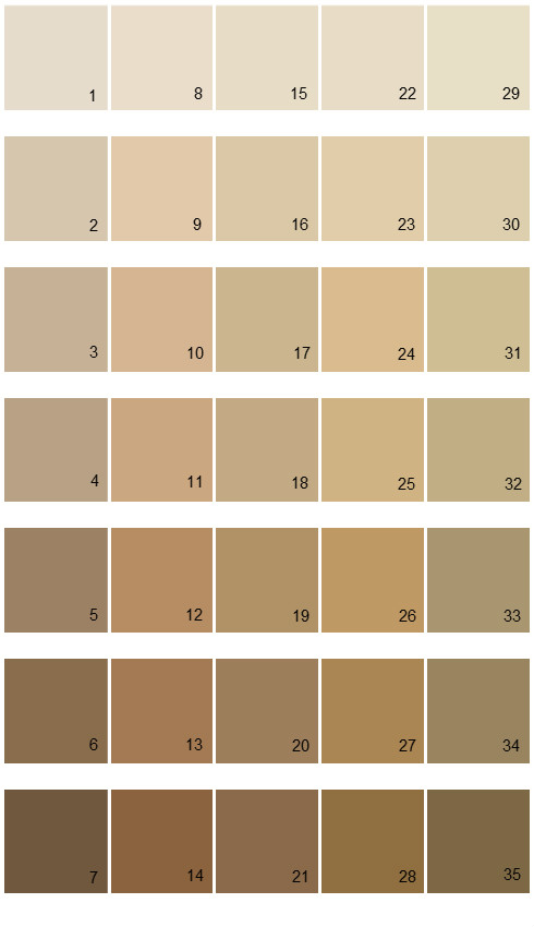 Sherwin Williams Fundamentally Neutral House Paint Colors - Palette 04