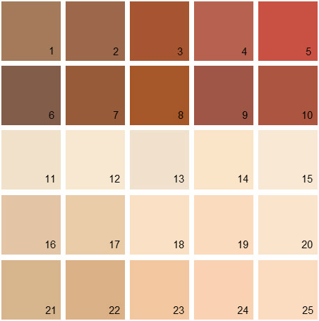 Benjamin Moore Orange House Paint Colors Palette 06