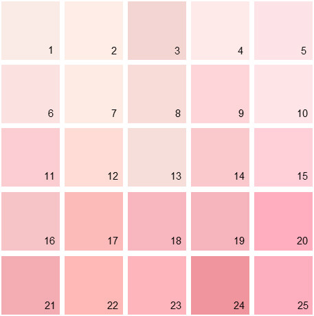 Benjamin Moore Pink House Paint Colors Palette 04